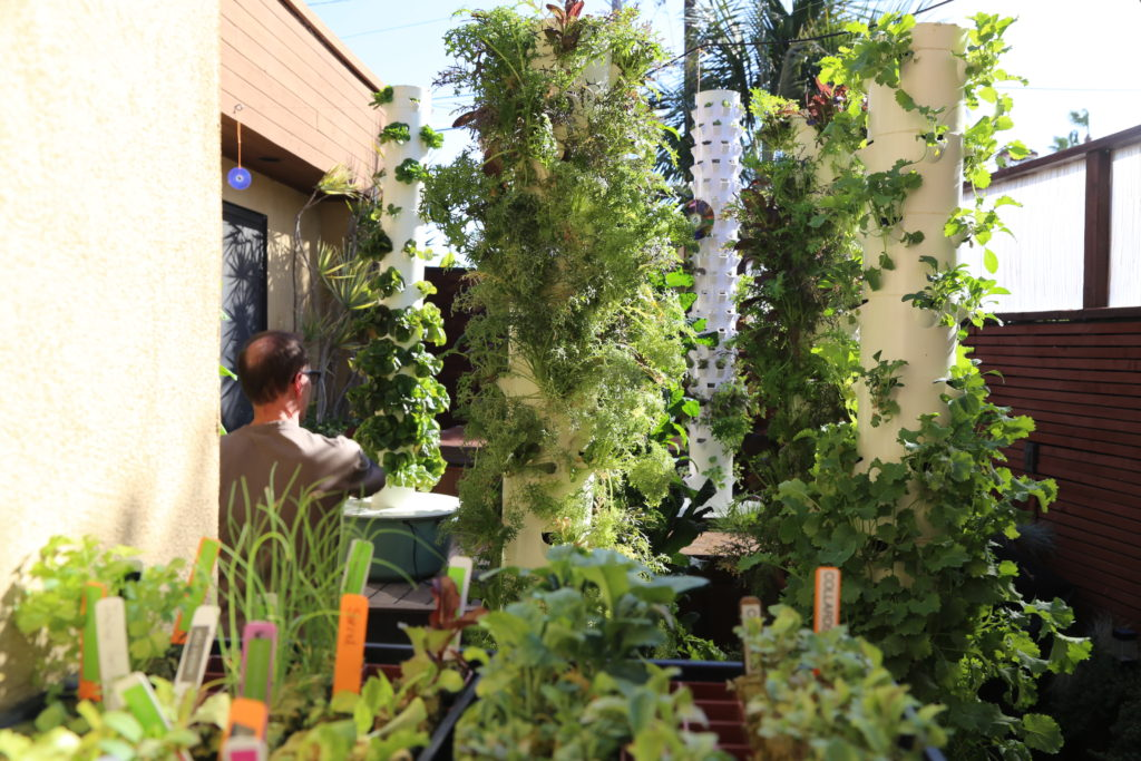 Les Towers Gardens chez SoCal Farm