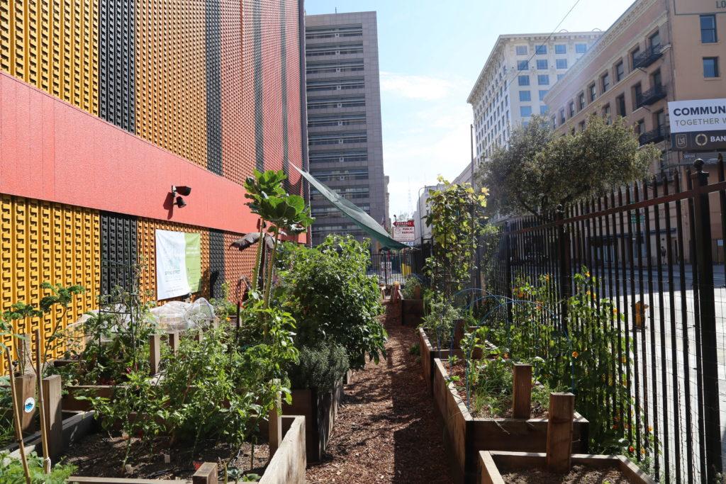 Visite du Spring Street Community Garden en plein coeur du downtown