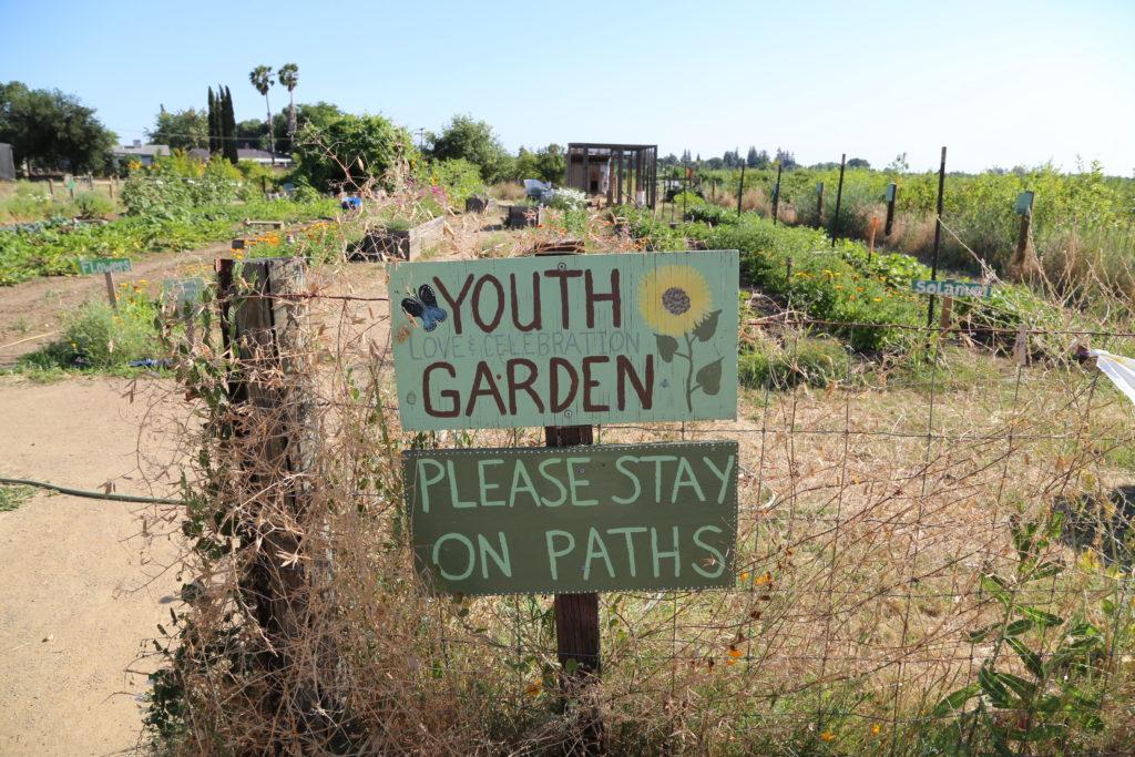 Le jardin des enfants à Soil Born Farm pour apprendre ludiquement comment les fruits et légumes poussent