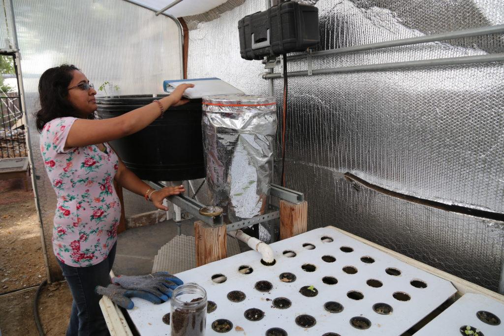 Fatima nous montre le module d'aquaponie que Grenn Tech Education a installé à Suga' Cane Community Garden